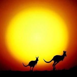 同享澳洲生活头像