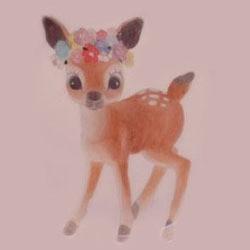 小鹿澳洲代购头像